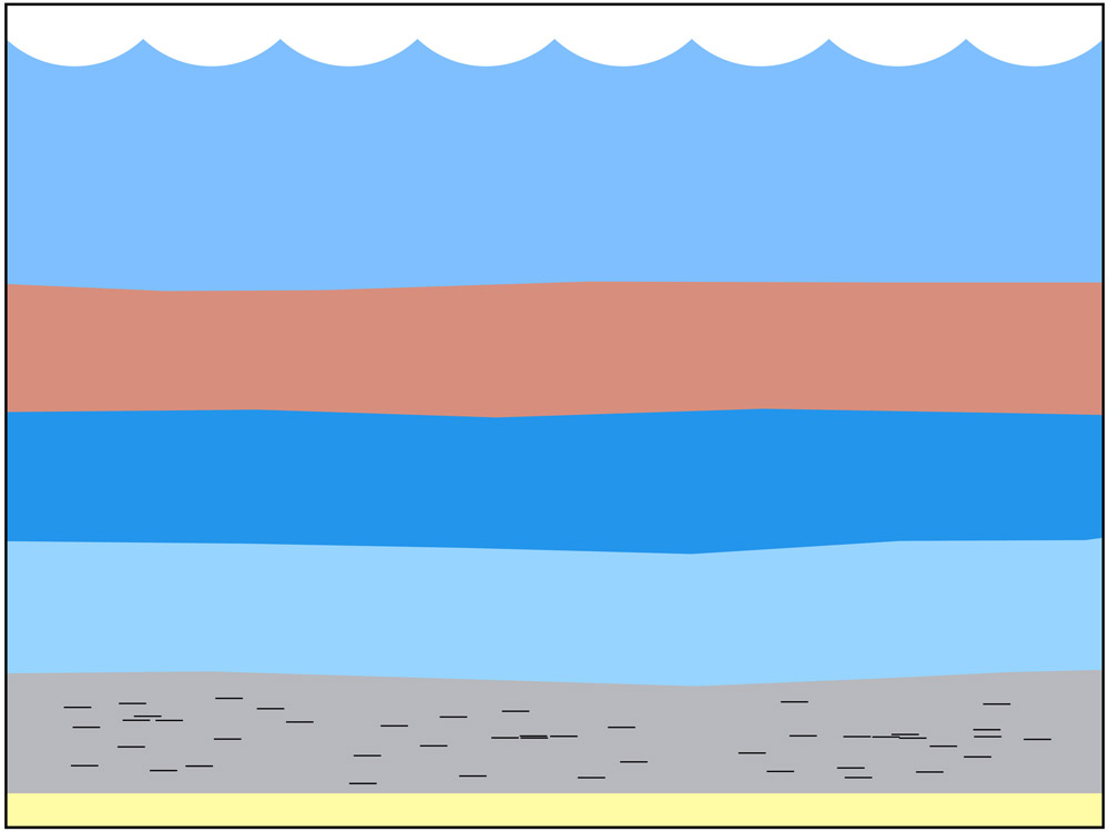 <span class='figure-reader-id'>Stage 5</span> Fast-flowing <u>rivers carried</u> and deposited <u>sand, silt, and clay</u> into the area. <br /> These <u>sediments</u> (small pieces of rock and dirt carried by water) were also <u>piled into layers</u>.