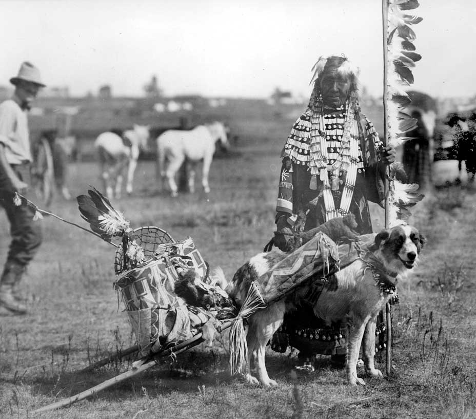 The Plains Indians used the dog travois to transport goods from one location to another.