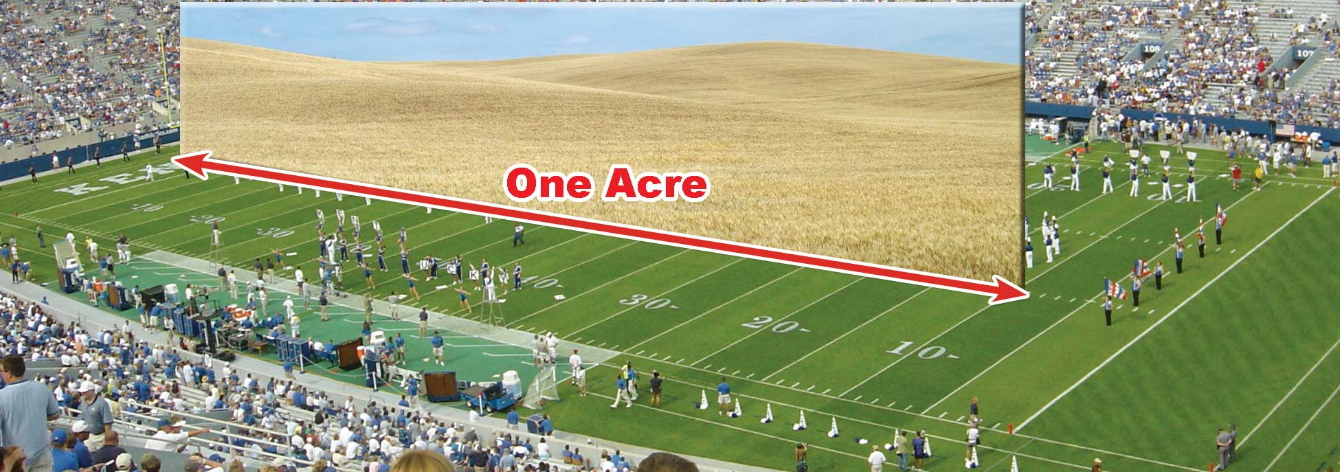 Figure 11. An acre