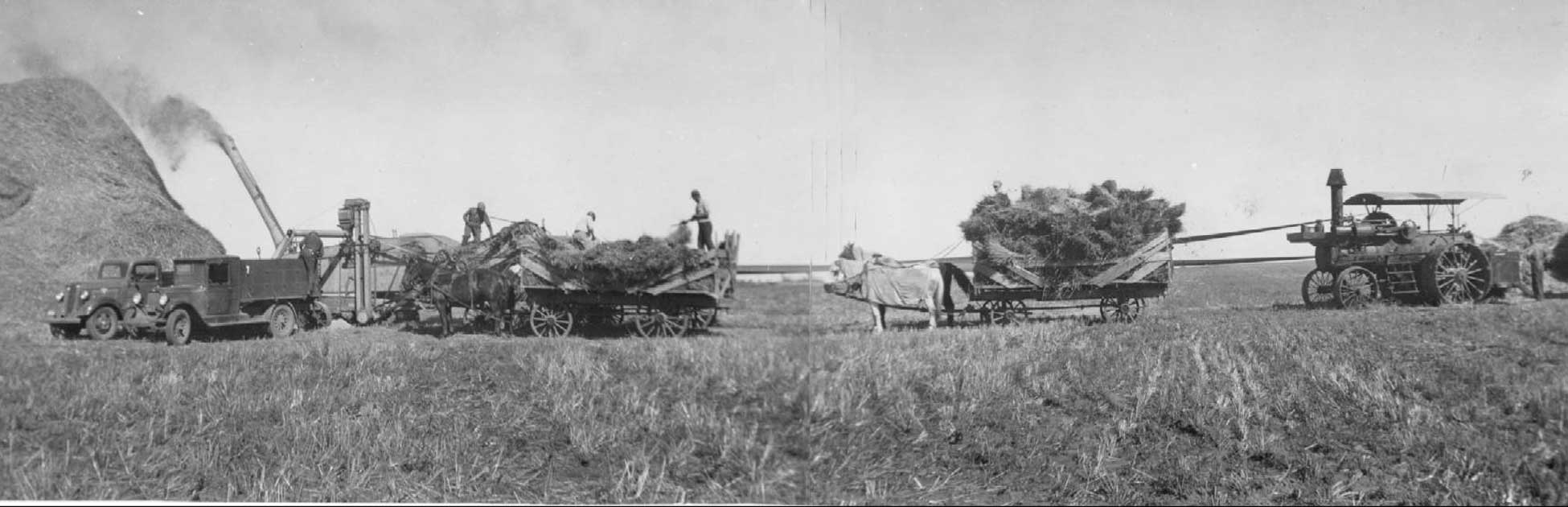 Figure 47. A threshing crew