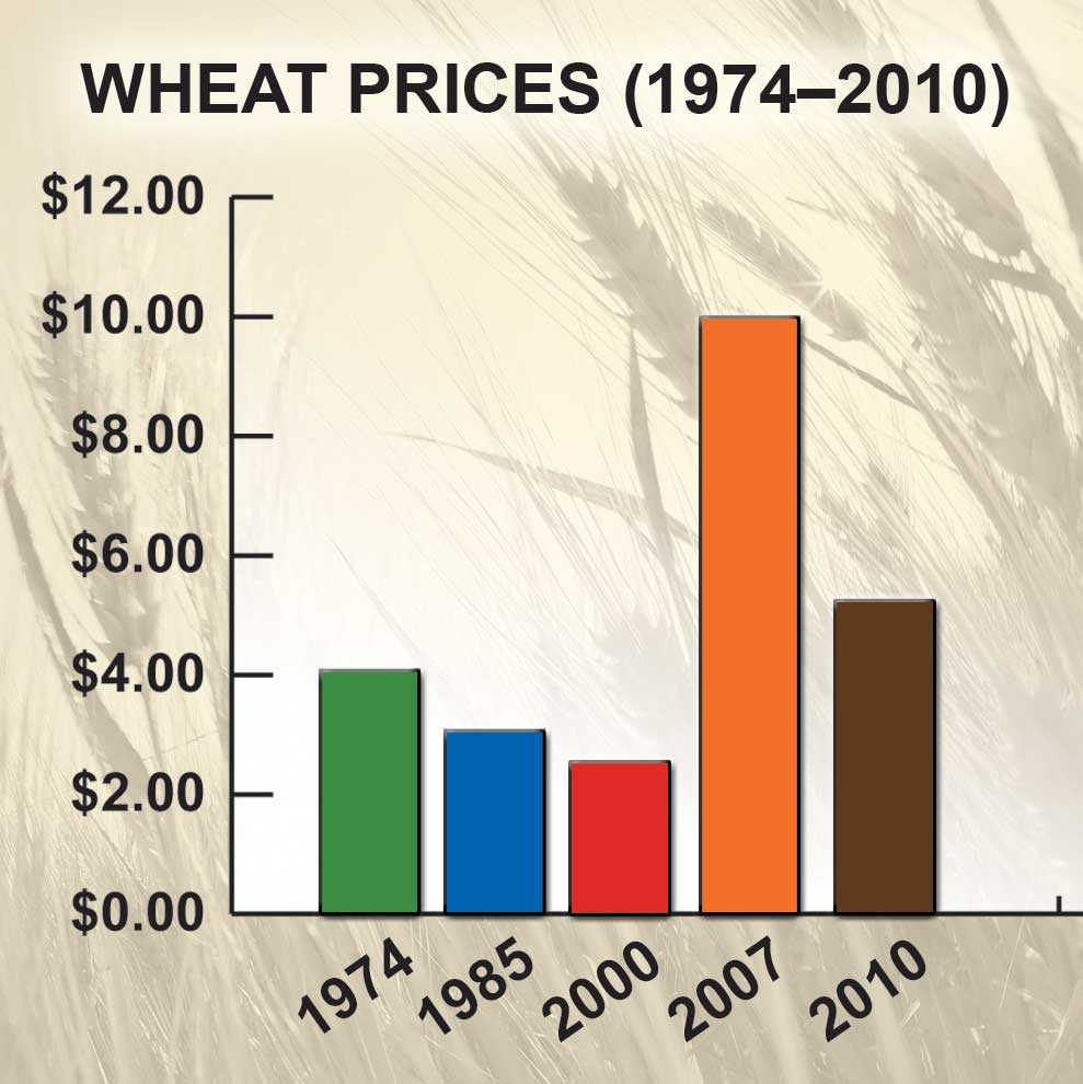 Figure 60. Wheat Prices, 1974–2010