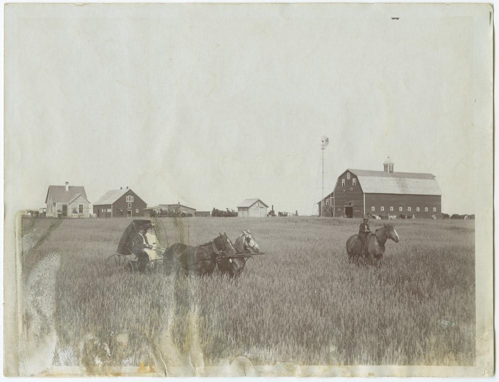 Section 5 Homestead Farms North Dakota Studies