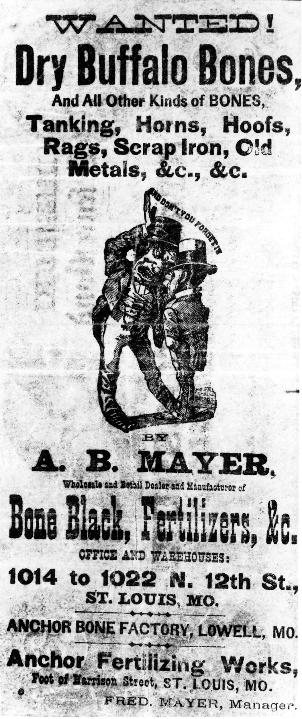 Newspaper Ad for Buffalo bones