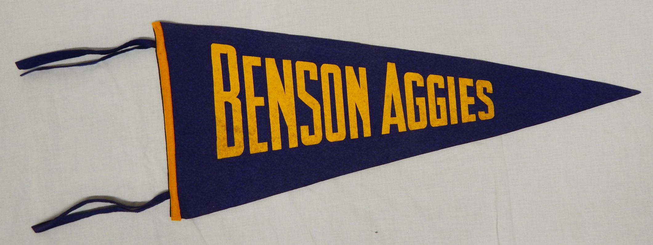 Benson county ag and training school